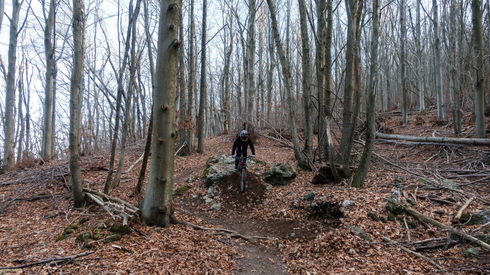 trailspotting.de – ein MTB-Blog